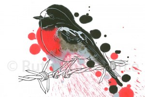 Scarlet Robin by Ruth Ann Pearce